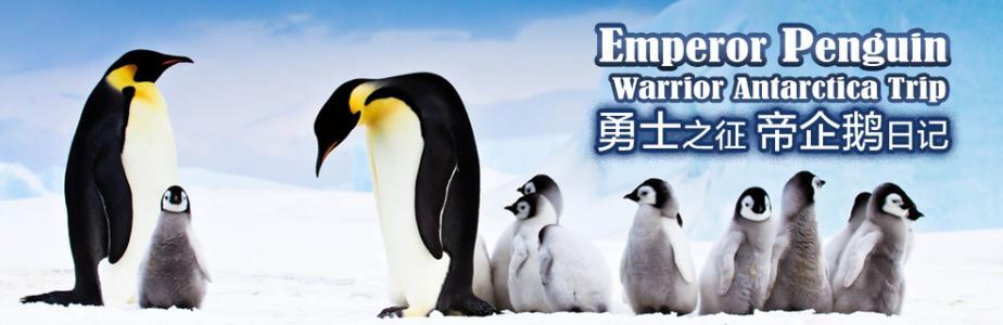 帝企鹅日记.jpg